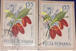 Error   Romania 1964,  Mi 2366,   Flower, Plants With Printed Misplaced Leaf Errors - Variedades Y Curiosidades