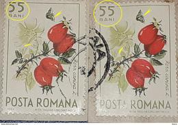 Error   Romania 1964,  Mi 2364   Flower, Plants With  Errors BUTTERFLIES - Variedades Y Curiosidades