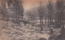 2869181Finsterbergen, Beim Ganseliesel Im Leinagrund 1922 (Links Unter Kleine Falten) - Allemagne