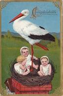 690/ Ooievaar Met Drie Baby's, Relief 1911 - Baby's