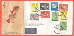 SINGAPOUR LETTRE DE 1962 FAUNE,POISSONS - Singapour (1959-...)