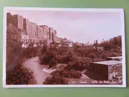 Liban - Carte Postale - Tripoli - Vallée Du Nahr Abou-Ali - Photo Rue Weygand - Beyrouth - Libano