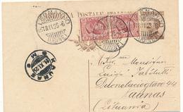 1925 CARTOLINA POSTALE X ESTERO LITUANIA DESTINAZIONE DI PREGIO - Storia Postale