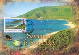 BRITISH VIRGIN ISLANDS MAXIMUM POST CARD SAVANNAH POND BAY  (GENN200887) - British Virgin Islands