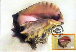 BRITISH VIRGIN ISLANDS MAXIMUM POST CARD CORAL REEFS  (GENN200889) - British Virgin Islands