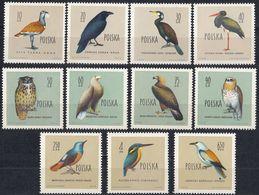 POLSKA - POLONIA - 1960 - Lotto Di 11 Valori Nuovi MNH: Yvert 1070/1079 E 1081. - 1944-.... Repubblica