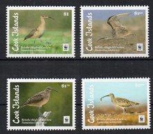 COOK ISLANDS - ILES COOK - 2017 - OISEAUX - BIRDS - - Cook