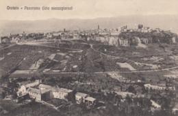 AK - ORVIETO - Panorama Der Altstadt Am Felsplateau 1920 - Italy