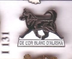 I131 Pin's Dog Chien De Traineau Husky OR ALASKA Achat Immédiat - Animaux