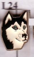 I24 Pin's DOG Chien De Traineau Husky  Tête Achat Immédiat - Animaux