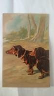 CPA Postcard   TECKEL ..chien .. Annimal .. Carte  Gauffrée - Honden