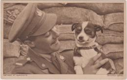 8653 Eb.   Captured At Courcelette - Canadian Official - Cane Dog - Militari