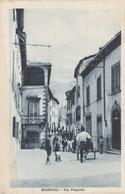 MARRADI - VIA PESCETTI - Firenze (Florence)