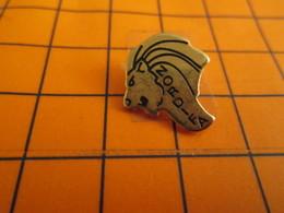2119 Pin's Pins / Beau Et Rare  / THEME ANIMAUX / TETE DE LION NORDIFA - Animaux