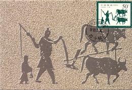 CINA  MAXIMUM POST CARD   (GENN200904) - Lettres & Documents