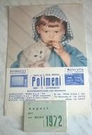 CALENDARIO 1972 POLIMENI AGENZIA PER SICILIA ORIENTALE  (8) - Calendars