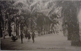 Stanleyville : Une Des Avenues Principales - Congo Belge - Autres