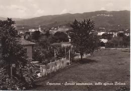 CEPARANA - SCORCIO PANORAMICO, SULLO SFONDO BOLANO - VIAGGIATA 1963 - Otras Ciudades