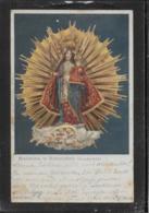 AK 0411  Madonna In Birkenstein ( Gnadenbild ) Um 1915 - Jungfräuliche Marie Und Madona