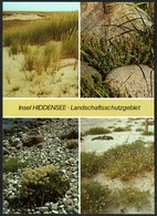 D3043 - TOP LSG Hiddensee - Bild Und Heimat Reichenbach - Medicinal Plants