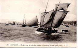 Ille Et Vilaine : Cancale : Dèpart Pour La Pêche Aux Huîtres - Cancale