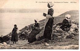 Finistère : La Pointe Du Raz : Gardeuses De Vaches - France