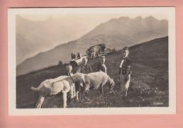 OLD POSTCARD - SWITZERLAND - SCHWEIZ - SUISSE -    GEITEN - GOATS - CHEVRES - - MAILED FROM GRINDELWALD - BE Berne