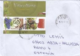 GOOD ROMANIA Postal Cover To ESTONIA 2019 - Good Stamped: Wine - Cartas