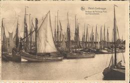Heist - Zeebrugge -- Bateaux De Pêche Au Port.       ( 2 Scans ) - Heist