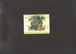 Russia  2020 Berries Set MNH - 1992-.... Federation