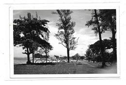 CPMJ4090 CARTE PHOTO SOUVENIR D ANDAPA ANTALAHA - Madagascar