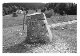 CHEZERY-FORENS - Borne Au Lion - France