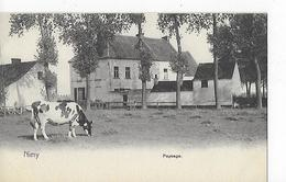 1 Cpa Nimy (Mons) Paysage : Ferme, Vache - Autres