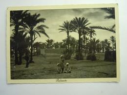 CPA - LIBYE LIBYA / LIBIA - BENGHAZI / BENGASI  -  AFRICA ITALIANA -  PALMETO ANIME - Libyen