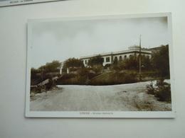 CPA - LIBYE LIBYA / LIBIA - CIRENE  -  AFRICA ITALIANA - MUSEO STATUARIO - Libyen