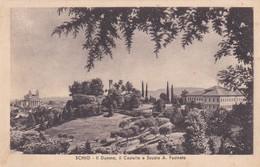 CARTOLINA - VICENZA - SCHIO - IL DUOMO IL CASTELLO E SCUOLA A . FUSINATO  - VIAGGIATA PER MILANO - Vicenza