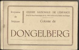 Jodoigne - DONGELBERG Oeuvre Nationale De L'Enfance Colonie De Dongelberg, Carnet De 32 Cartes-vues (bon état - Complet) - Jodoigne