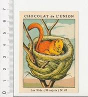 Chromo Chocolat De L'Union Nids Animal Muscardin Variété D'écureuil Nid Arbre  / IM 5/378 - Chocolat