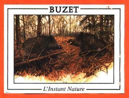 étiquette De Vin De Buzet L'instant Nature à Buzet Sur Baise - 75 Cl - Sangliers - Hunting