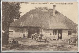 CPA - 39 - Une Chaumière à Ecleux - Animée - Vache - Boeuf - Jura - France