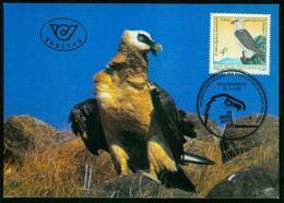 Mk Austria Maximum Card 1987 MiNr 1901 | 25th Anniv Of Alpine Zoo Innsbruck, Lammergeier ( Bartgeier ) - Maximumkarten (MC)