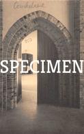 Kerk Doorgang Naar Sacristie -  Koekelare Mokker - Koekelare