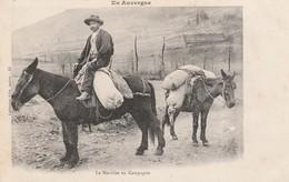 CPA:MEUNIER EN CAMPAGNE SUR CHEVAL SACS SUR DOS (63).ÉCRITE - Auvergne Types D'Auvergne