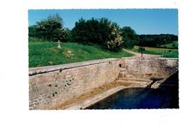 Cpm - BRANS - Jura - Croix - Chemin De La Foret Communale Et De La Fontaine Bataillé - Autres Communes