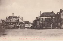 28 - LA LOUPE - Place Vauban Et Marché Aux Veaux - La Loupe