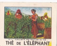 THE DE L'ELEPHANT / CUEILLETTE DES FEUILLES DE THE (arbrisseau Ceylan ,Inde ...) - Thé & Café