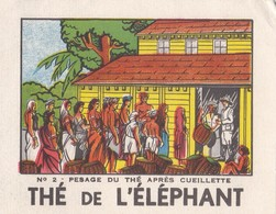 THE DE L'ELEPHANT / PESAGE DU THE APRES CUEILLETTE N°2 - Thé & Café