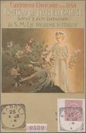 Thematik: Medizin, Gesundheit / Medicine, Health: 1894, Italy. Very Rare Private Postcard 10c Umbert - Medizin