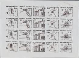 Thematik: Olympische Spiele / Olympic Games: 1995. ZWANGSZUSCHLAGSMARKENAUSGABE Zugunsten Des Nation - Olympische Spiele