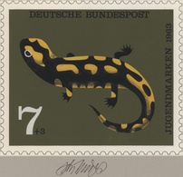 Thematik: Tiere-Amphibien / Animals-amphibian: 1963, Bund, Nicht Angenommener Künstlerentwurf (20x17 - Reptiles & Batraciens